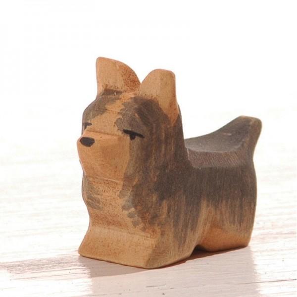 Ostheimer Yorkshire Terrier 10621